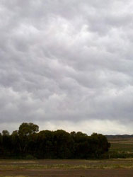 Mammatus clouds after the 14 degree day in the Quorn district