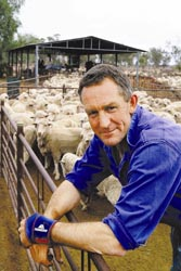 MANAGING WELL: Queensland farmer and Bestprac Advisory Chairman, Stuart Mitchell, says that flock management since ceasing mulesing has not been difficult. Also significant financial benefits can be achieved.