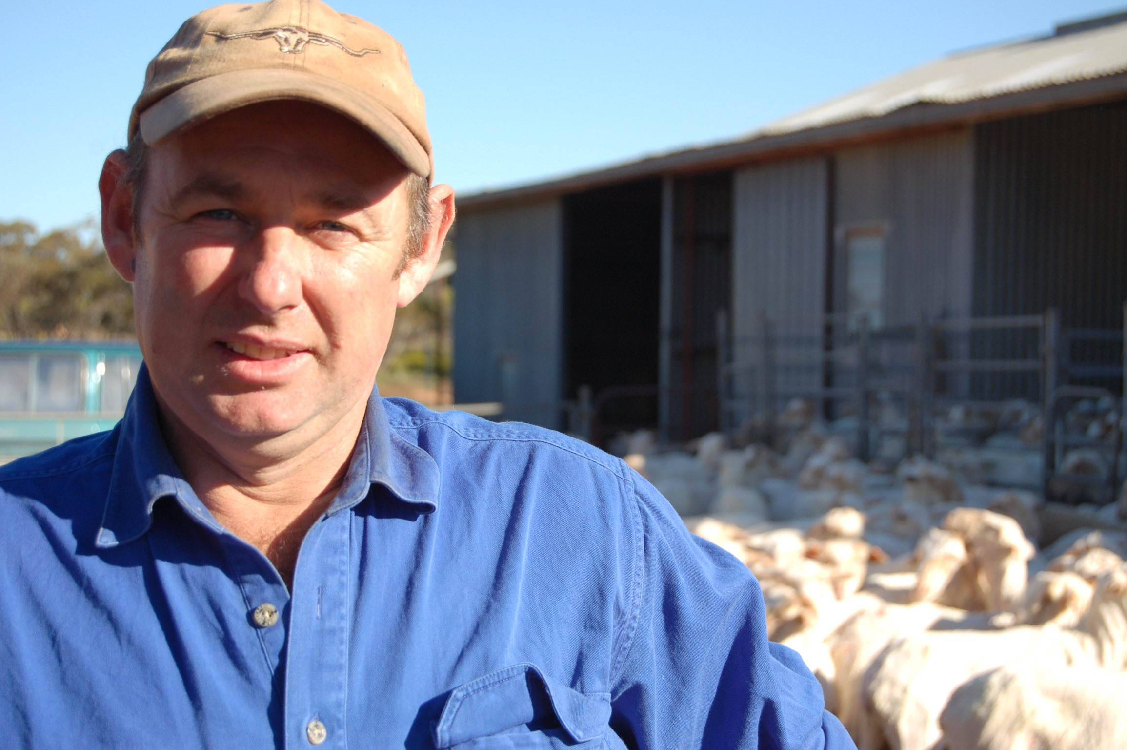 James Robertson sees growth in the wool markets.