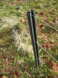 A 810mm Weston fence dropper. This is a subdivisional electric fence which has two hot wires and an earth wire. A Weston fence dropper is clipped to the steel post with a single Weston fence dropper between the steel posts. Bottom and top wires are live. This is a cost effective and easy to assemble sub divisional fence for sheep, cattle and goats.